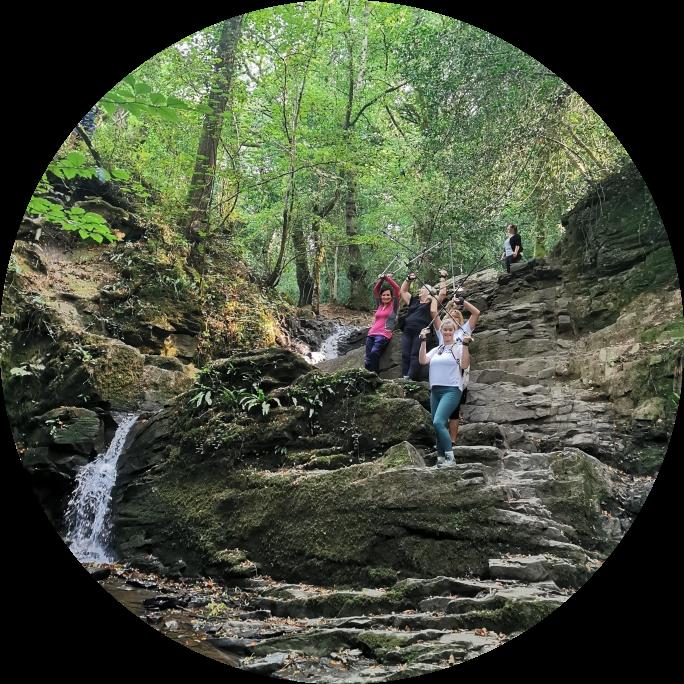 Greyfield Wood Waterfall