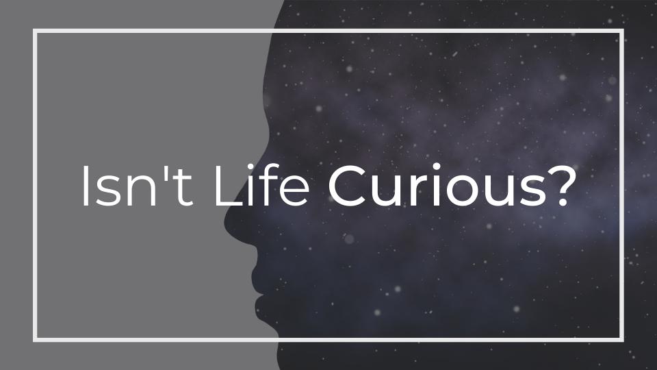 Isn't Life Curious?