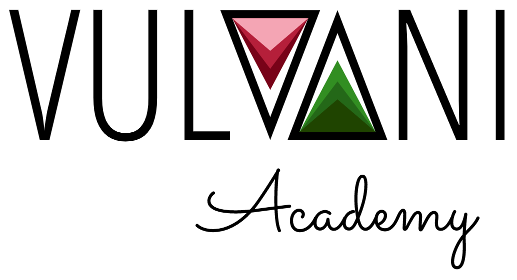 Vulvani Academy Logo
