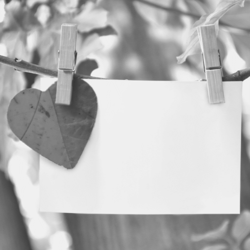 Blank card and heart on branch with clothes pins