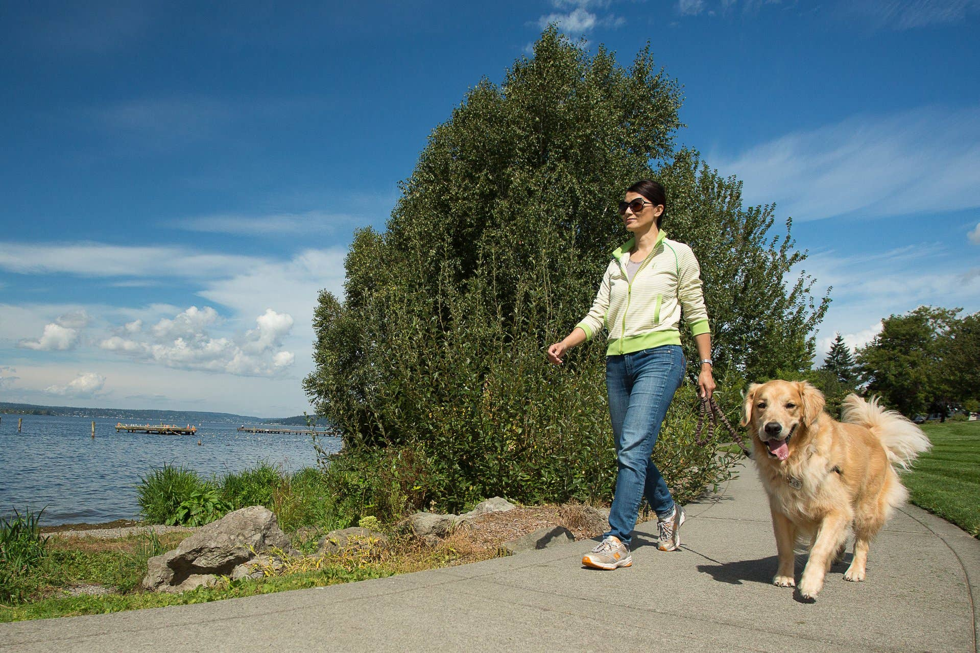 woman walking dog at waterfront