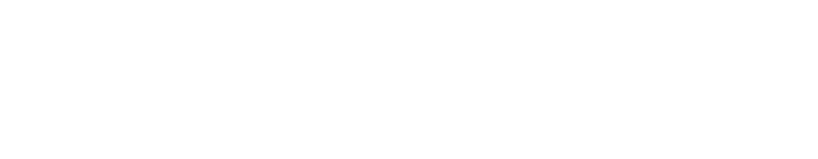 Dr. David Ricketts - Driving Success Through Innovation