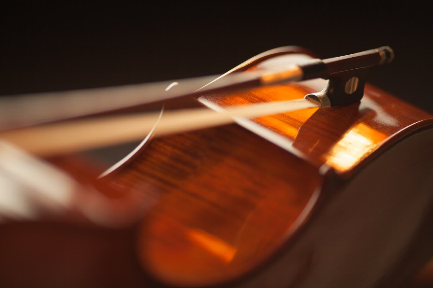 string instrument with bow