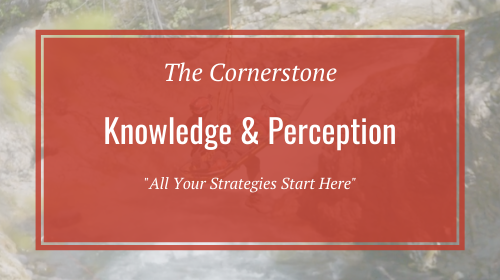 The Cornerstone: Knowledge & Perception