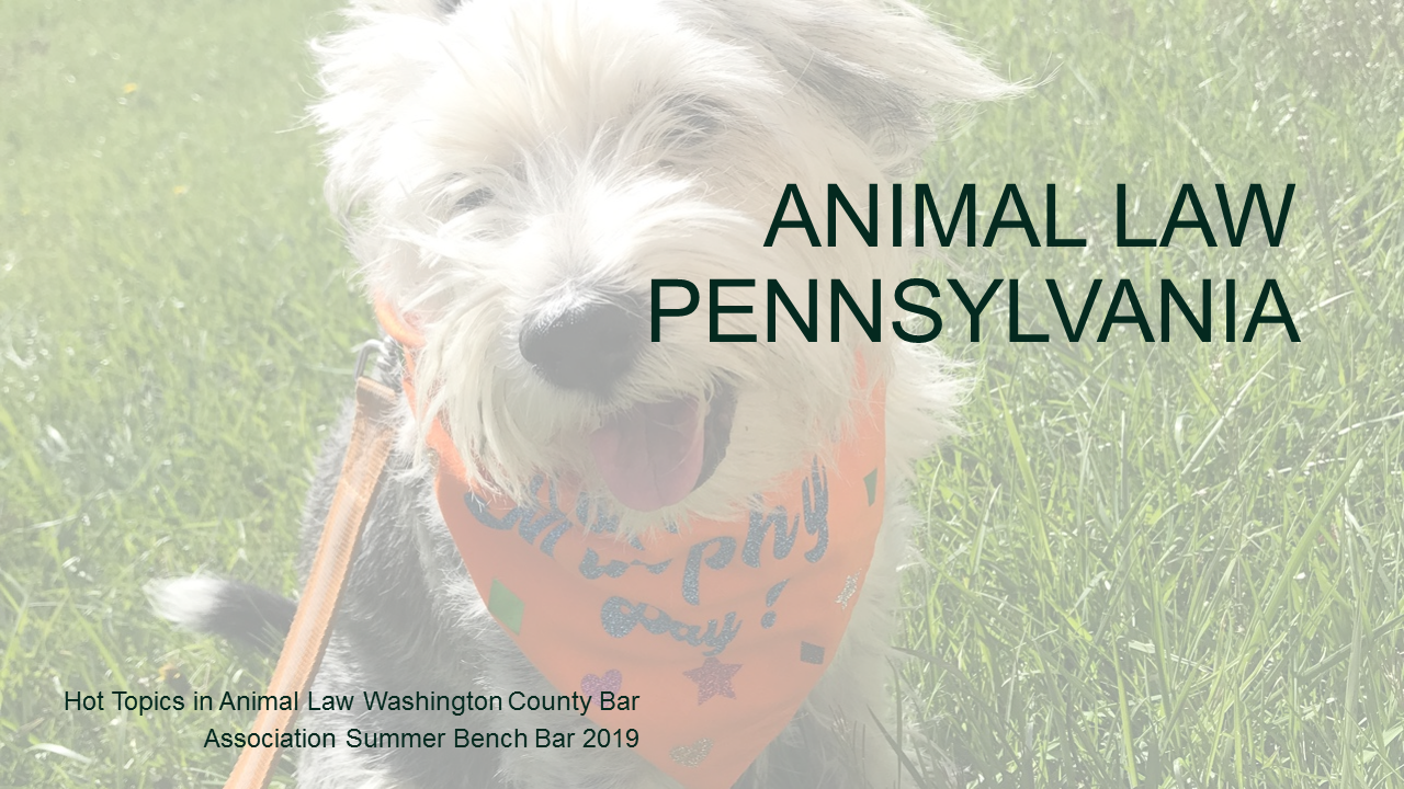 Hot Topics in PA Animal Law (1 PA Substantive CLE Credit)