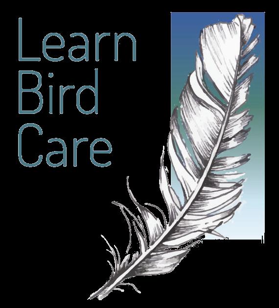 Learn Bird Care Ltd