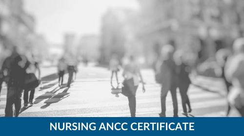 ANCC 20-Credit Certificate Course Bundle