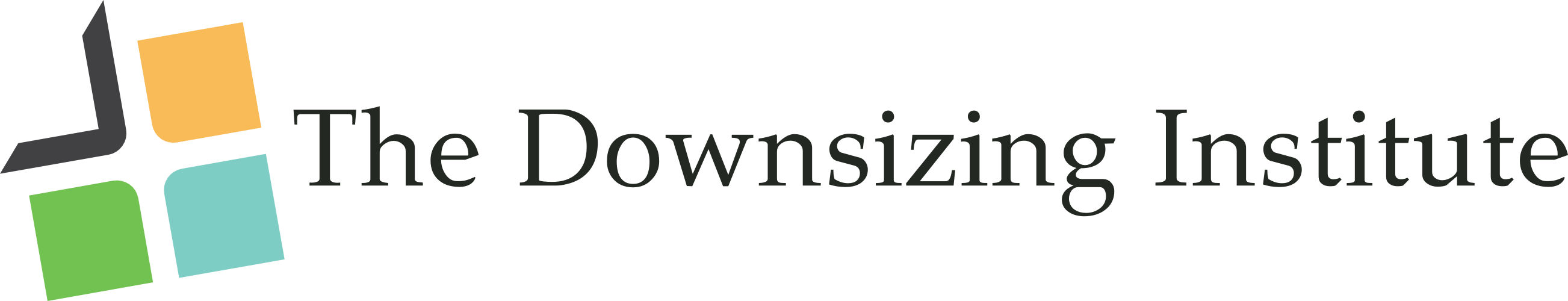 The Downsizing Institute Home Page