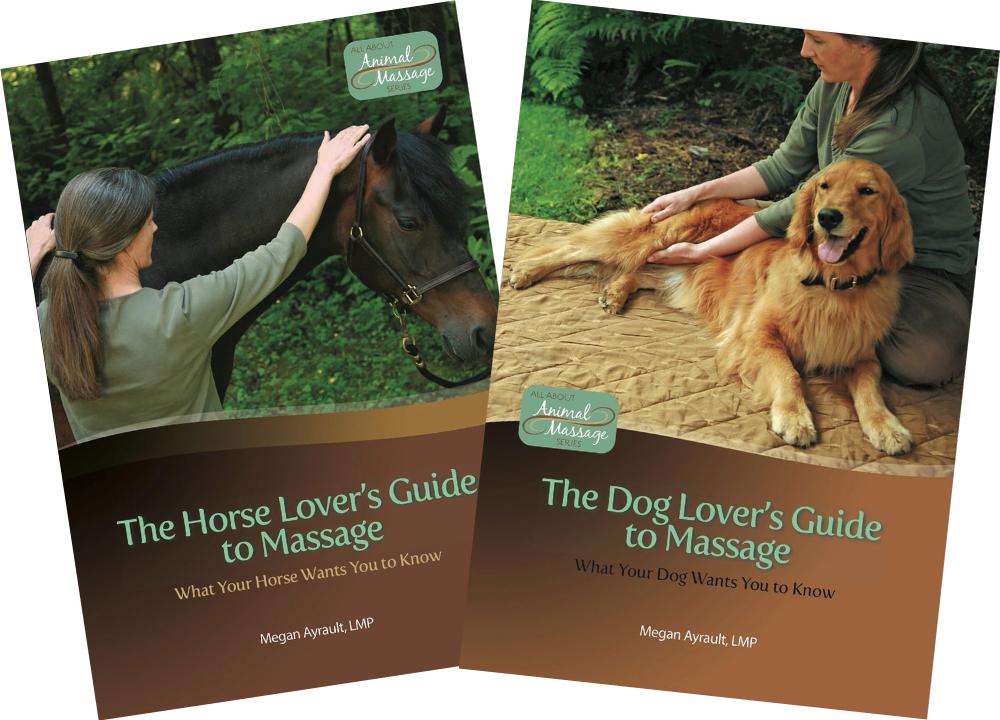 Megan's books are on Amazon.