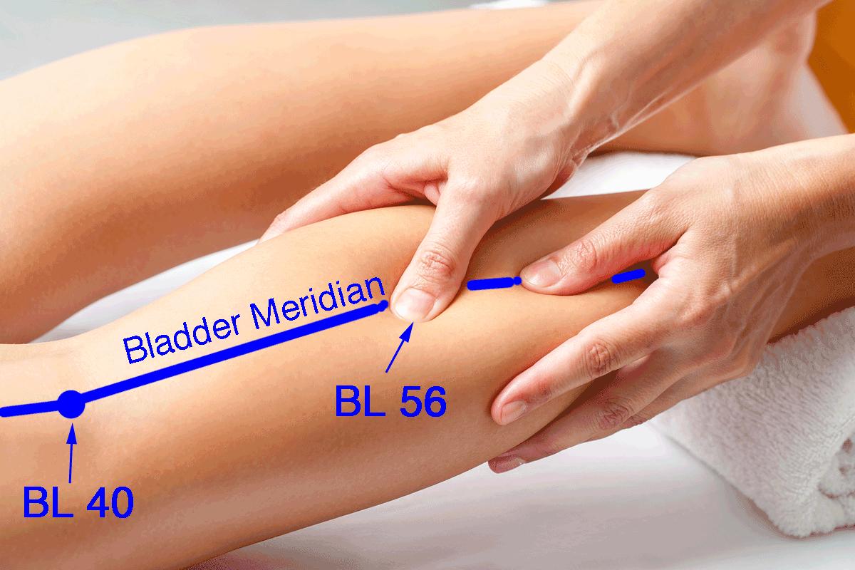 Bladder Meridian Points