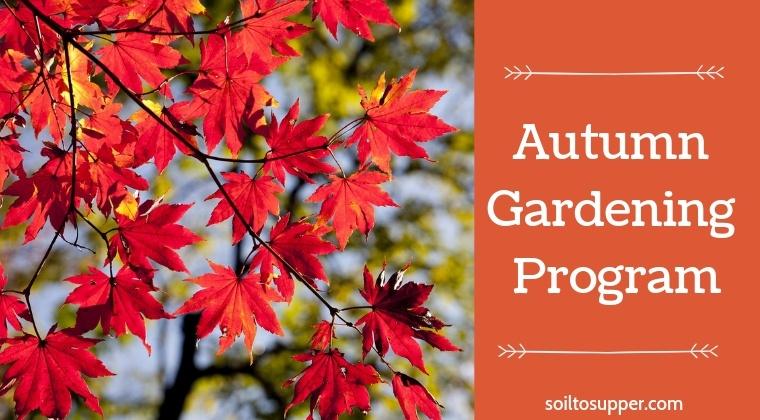 Autumn Gardening Program