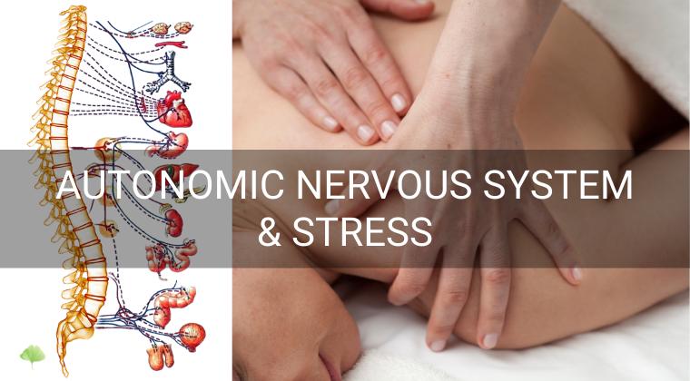 Autonomic nervous system and stress