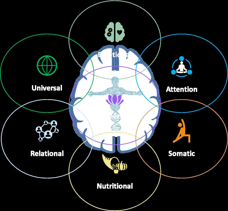Integrative NeuroSomatic® Self-Mastery Blueprint