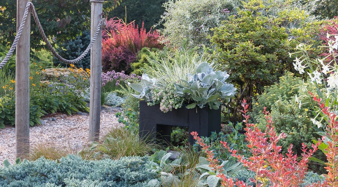 Ultimate Container Gardening Bundle